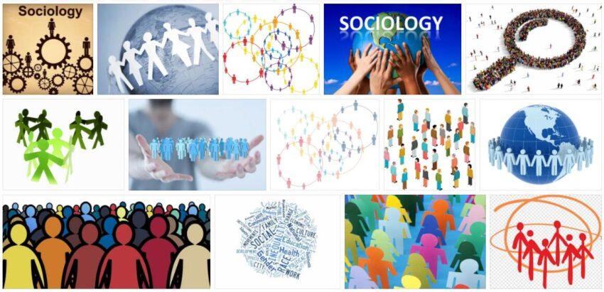 Sociology